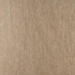 Oxide Titanium | Wandbeläge / Tapeten | Arte