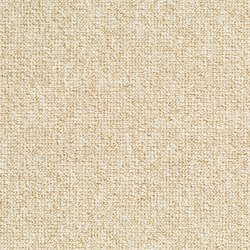 Concept 509 - 115 | Carpet rolls / Wall-to-wall carpets | Carpet Concept