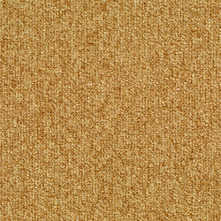 Concept 509 - 142 | Wall-to-wall carpets | Carpet Concept