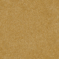 Manufaktur Pure Silk 2513 sand | Rugs / Designer rugs | OBJECT CARPET