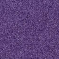 Finett Feinwerk buntes treiben | 753508 | Wall-to-wall carpets | Findeisen