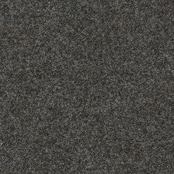 Finett Vision color | 400129 | Moquette | Findeisen