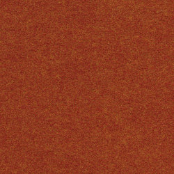 Finett Vision color | 500133 | Moquette | Findeisen