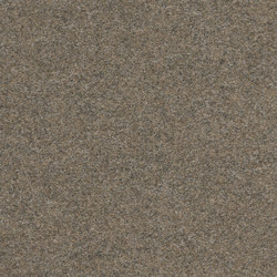 Finett Vision color | 800151 | Wall-to-wall carpets | Findeisen