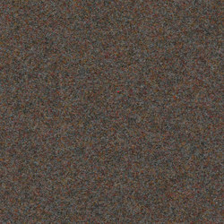 Finett Vision metal | 800157 | Carpet rolls / Wall-to-wall carpets | Findeisen