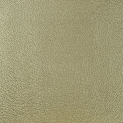 Santiago Fabrics | Jurena - Champagne | Artificial leather | Designers Guild