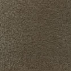 Santiago Fabrics | Jurena - Cocoa | Artificial leather | Designers Guild