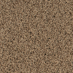Step In 1404 Bisquit | Formatteppiche | OBJECT CARPET