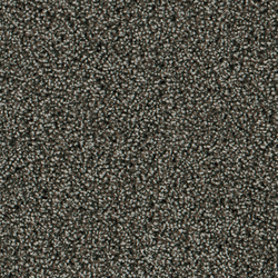 Step In 1401 Cappuccino | Tappeti / Tappeti d'autore | OBJECT CARPET