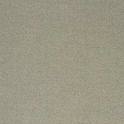 Cara Fabrics   Lismore - Driftwood   Curtain fabrics   Designers Guild