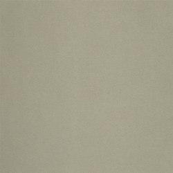 Cara Fabrics | Tanara - Graphite | Curtain fabrics | Designers Guild