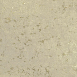 Cassan Fabrics | Papilo - Champagne | Curtain fabrics | Designers Guild