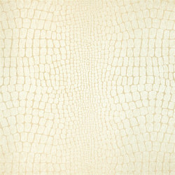 Cecilia Fabrics | Cecilia - Oyster | Tejidos para cortinas | Designers Guild