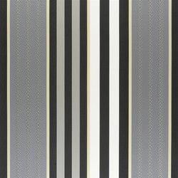 Indupala Fabrics | Hiranya - Noir | Curtain fabrics | Designers Guild