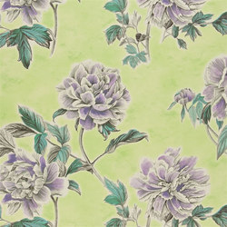 Kaori Fabrics | Kaori - Apple | Tessuti tende | Designers Guild