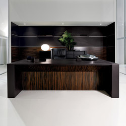 Meteora | Executive desks | i 4 Mariani
