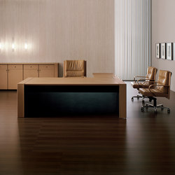 Meteora | Executive desks | i 4 Mariani