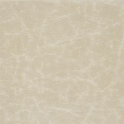 Arizona Fabrics | Arizona - Platinum | Tessuti | Designers Guild