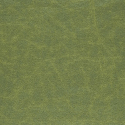 Arizona Fabrics | Arizona - Forest | Stoffbezüge | Designers Guild
