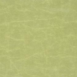 Arizona Fabrics | Arizona - Aloe | Stoffbezüge | Designers Guild