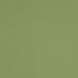 Aviano Fabrics | Forest | Curtain fabrics | Designers Guild