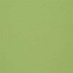 Aviano Fabrics | Grass | Curtain fabrics | Designers Guild