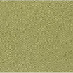 Bassano Fabrics | Ravello - Moss | Curtain fabrics | Designers Guild