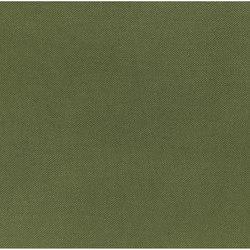 Bassano Fabrics | Ravello - Fern | Curtain fabrics | Designers Guild