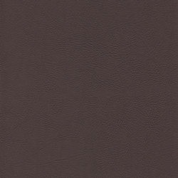 skai Evida choco | Faux leather | Hornschuch