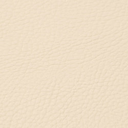 skai Neptun Pescara ivory | Faux leather | Hornschuch