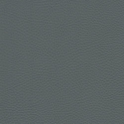 skai Parotega NF slate-gray | Faux leather | Hornschuch