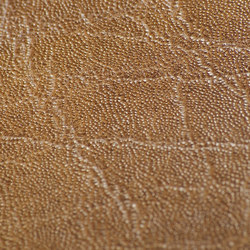 skai Plata rodeo | Faux leather | Hornschuch