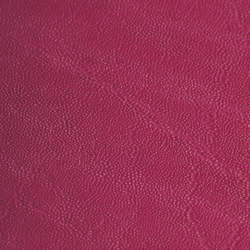skai Plata fuchsia | Faux leather | Hornschuch