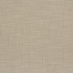 Orba Fabrics | Orba - Moleskin | Curtain fabrics | Designers Guild
