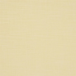 Orba Fabrics | Orba - Vanilla | Curtain fabrics | Designers Guild