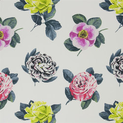 Pavonia Fabrics | Pavonia - Peony | Tejidos para cortinas | Designers Guild