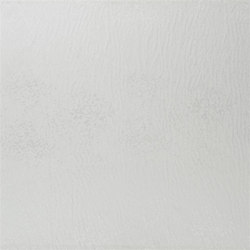 Portico Taffetas | Ciottoli - Alabaster | Curtain fabrics | Designers Guild