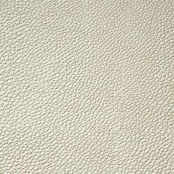 skai Sochagro EN ivory | Faux leather | Hornschuch