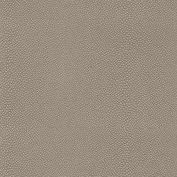 skai Soshagro EN fog | Faux leather | Hornschuch