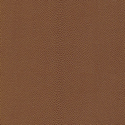 skai Soshagro EN brown | Faux leather | Hornschuch