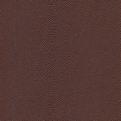 skai Soshagro EN chestnut-mocca | Cuero artificial | Hornschuch