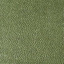 skai Sochagro EN grün-schwarz | Kunstleder | Hornschuch