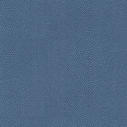 skai Soshagro EN sky-ocean | Kunstleder | Hornschuch