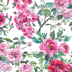 Shanghai Garden Fabrics | Shanghai Garden - Peony | Tissus pour rideaux | Designers Guild