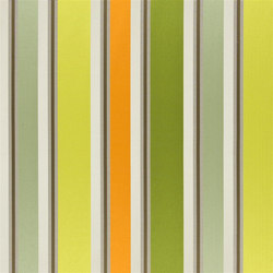 Zetani Fabrics | Zetani - Moss | Curtain fabrics | Designers Guild
