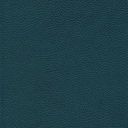 skai Sotega FLS petrol | Faux leather | Hornschuch