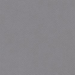 skai Sotega FLS platin | Faux leather | Hornschuch