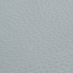 skai Sotega Stars silver | Faux leather | Hornschuch