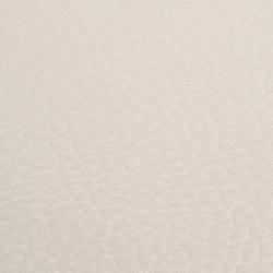 skai Sotega Stars pearl | Faux leather | Hornschuch