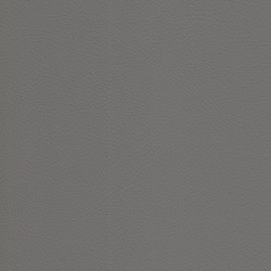 skai Toledo EN fango | Faux leather | Hornschuch